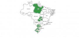 Projeto além fronteiras - CentralPrev pintando o Brasil!!